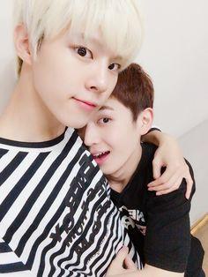 Wooshin & Gyujin