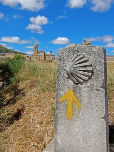 A complete guide including common FAQ's for the Camino De Santiago. Places In Spain, Oh The Places You'll Go, Spain Pilgrimage, Rocky Mountain National, National Forest, West Coast Trail, Utah Hikes, The Camino, Colorado Hiking