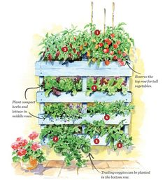 Great book with step-by-step instructions to build your own vertical pallet garden. Groundbreaking Food Gardens (Storey Publishing, by Niki Jabbour is a stellar collection of unique food garden plans from some of the best gardeners and designers in Vertical Pallet Garden, Pallets Garden, Pallet Gardening, Fairy Gardening, Gardening Quotes, Garden Trellis, Herb Garden, Garden Beds, Palette Deco