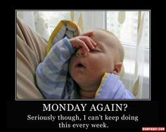 Check out: Baby Memes - Tomorrow's Monday? One of our funny daily memes selection. We add new funny memes everyday! Bookmark us today and enjoy some slapstick entertainment! Funny Baby Memes, Funny Babies, Funny Kids, Funny Cute, Funny Jokes, Baby Humor, Funny Work, Funny Stuff, Funny Happy