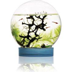 Bioglobe Ecosysteme autonome