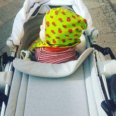 die ersten sechs Monate mit baby