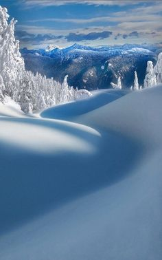 Seymour Provincial Park in North Vancouver, British Columbia, Canada. Actually white really but the reflection from the sky and shade and shadows throw a wonderful shade of blue across the scenery. Beautiful World, Beautiful Places, Beautiful Pictures, Amazing Places, Inspiring Pictures, Beautiful Scenery, Beautiful Flowers, Foto Picture, Winter Szenen