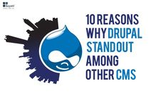 We give you top ten reasons why Drupal rocks the CMS arena