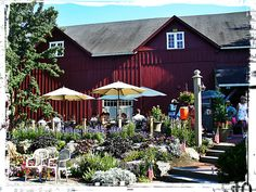 Take Mom to Chaddsford Winery this Mother's Day for a tour and wine tastings!