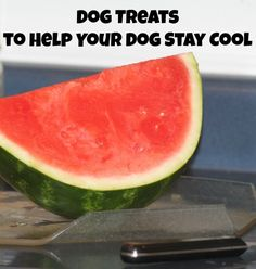 Dog Treats to Help Stay Cool With the last remains of summer clinging on we need to be sure that we keep ourselves and our dogs cool and hydrated. You will want to be sure you have plenty of cool n…