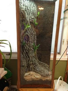 55 Gallon Verticle Arboreal Canopy