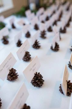 Pine cone name cards. Wonderfully Woodsy Winter Wedding in Purple and Green - Ctg Photography Pine cone name cards. Wonderfully Woodsy Winter Wedding in Purple and Green - Ctg Photography Wedding Flower Guide, Winter Wedding Flowers, Woodsy Wedding, Purple Wedding Flowers, Flower Bouquet Wedding, Fall Wedding, Wedding In Nature, Winter Wedding Arch, Winter Wedding Favors