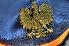 Polish eagle - badge