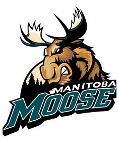 I played a lot of hockey in Winnipeg and this was the local AHL team the Manitoba Moose.