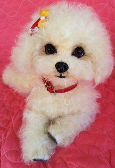 ZOE a Poodle puppy dog mohair By Brigitte Crowe - Bear Pile