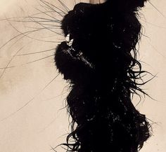 black-cat-art.jpg 640×591 pixels
