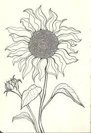 Image result for tree drawing ideas