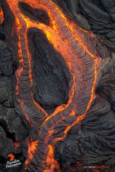 Our lava charter on Thursday, March 31st, documented continued activity on Kilauea's east rift zone, as flows continue to push into the Wao Kele o Puna Forest Reserve, with the distal tip rou…AB4P9989sm