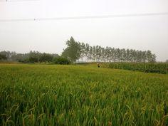 north of jiangsu