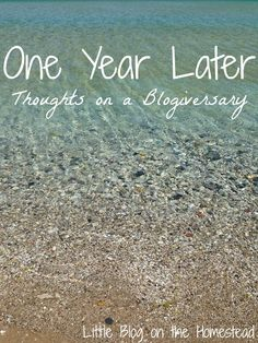 One Year Later: Thoughts on a Blogiversary