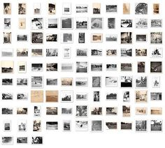 Huge Lot of 100 Vintage Black White Photographs Pets Animals Dogs Cats & More