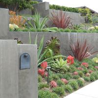 Clean, minimalist lines with bold forms. Less is more with modern gardens. Especially well suited to tropicals and succulents. Water Wise Landscaping, Modern Landscaping, Front Yard Landscaping, Tropical Landscaping, Modern Garden Design, Landscape Design, Modern Design, Outdoor Plants, Outdoor Gardens