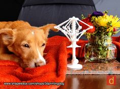 Deconstructed Umbrella 3d printed Miracle, the 3D Printing Dog, posing with his latest creation - the Deconstructed Umbrella.