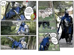Knight Artorias and Great Grey Wolf Sif