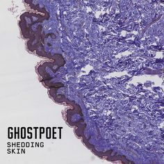 All The Time I Was Listening To My Own Wall of Sound: Ghostpoet - Shedding Skin Ghost Poet, My Ghost, Cd Cover, Album Covers, Cover Art, Radios, Line Of Best Fit, Mercury Prize, Play It Again Sam