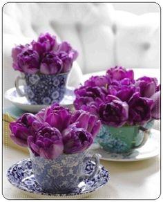 Fincan ve çiçek