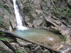 <p>Kurzer,+kindergeeigneter+Rundweg+zu+einem+'versteckten'+Wasserfall,+mit+der+Nr.+2+beschildert.</p> Water, Outdoor, Country Stores, Bike Trails, Hiking Trails, Ruins, Waterfall, Gripe Water, Outdoors