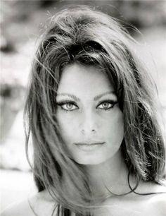 Sophia Loren by wilma