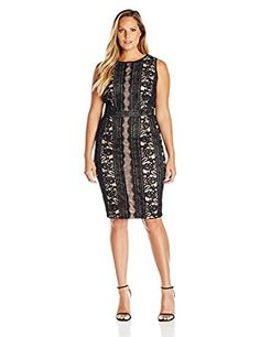 fed4d07dbb Adrianna Papell Women s Plus Size Embroidered Directional Striped Lace Dress  at Amazon Women s Clothing store