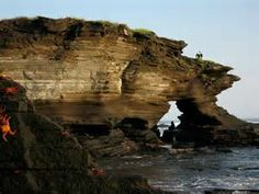galapagos islands pictures - Yahoo Image Search Results