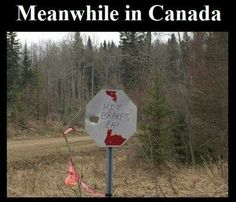 """40 Canadian Memes That'll Have You Poutine On Your Shoes To Go Right To Tim Horton's - Funny memes that """"GET IT"""" and want you to too. Get the latest funniest memes and keep up what is going on in the meme-o-sphere. Really Funny Memes, Stupid Funny Memes, Funny Relatable Memes, Haha Funny, Funny Stuff, Funny Humor, Random Stuff, Memes Humor, Funny Hockey Memes"""