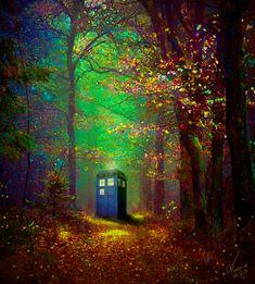 Tardis Paradise by ASlashPhoenix on DeviantArt
