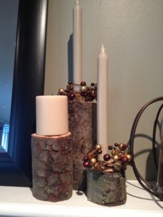 Two It Yourself: DIY Tree Branch Candle Sticks (Pottery Barn inspired)