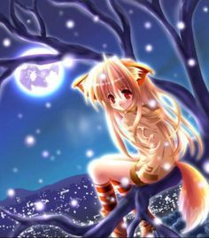 Fox neko