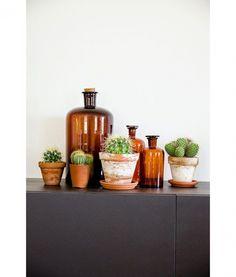8x cactussen subtiel verwerkt in huis