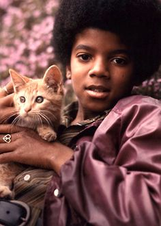 Art Michael Jackson celebrities-with-cats The Jackson Five, Jackson Family, Janet Jackson, Celebrities With Cats, Celebs, Young Michael Jackson, Animal Gato, Gatos Cats, Pets