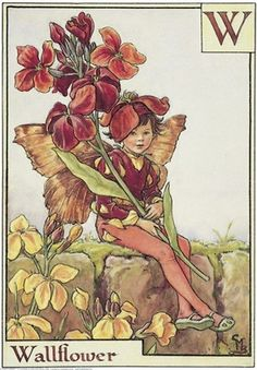 The image of the Vetch Flower Fairy above is one of Cicely Mary Barker's Flower Fairies. Description from pinterest.com. I searched for this on bing.com/images