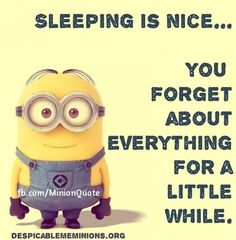 Today Top 30 Funny Minions (04:50:54 AM, Friday 06, January 2017 PST)   30  Pics