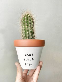 4 CAN'T TOUCH THIS: hand painted terracotta pot Cute cactus planter!
