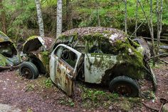 The Bastnas car graveyard lies in a Swedish forest and contains the the rusting carcasses of some 1,000 abandoned cars from World War Two to the 1970s.