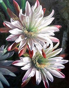 Brenda Semanick - Watercolor Watercolour Painting, Watercolor Flowers, Painting & Drawing, Watercolors, Art Floral, Big Flowers, White Flowers, Beautiful Paintings, Flower Art