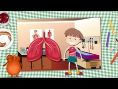 Our Body, Anne, Preschool, Family Guy, Classroom, Kids Rugs, Education, Science, Learning