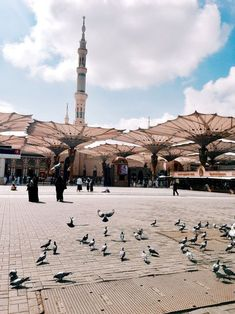 Sizin kadar hür olsaydım, ayrılmazdım Medine-i Münevvere'den. Mecca Madinah, Mecca Masjid, Mecca Islam, Islam Muslim, Islamic Wallpaper Hd, Mecca Wallpaper, Quran Wallpaper, Al Masjid An Nabawi, Masjid Al Haram