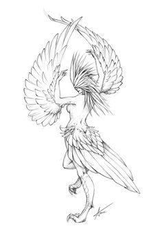 Harpies line art - Bing images