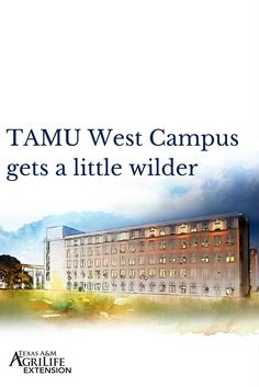 Construction has begun on the new Wildlife, Fisheries and Ecological Sciences building located on West Campus of Texas A&M University.