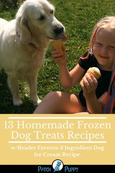 Homemade frozen dog treats are fun and easy to make. Some of these recipes only have 1 ingredient! Choose your favorite out of the 13 listed here! Frozen Dog Treats, Diy Dog Treats, Dog Treat Recipes, Dog Food Recipes, Dog Ice Cream, Dog Snacks, Homemade Dog, Ice Cream Recipes, Doge