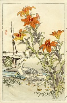 the birds and flowers of kono bairei | Bairei Flower and Bird Prints 1899