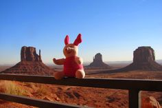 The world wide travels of a Pink Pig called Flor
