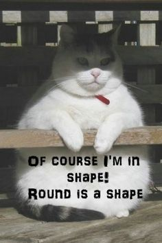 """So, I'm checking in for another fitness Friday and the big question right now is; """"Am I getting shapely?"""" Sure I am! Round is a shape! Hehe!"""