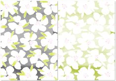 Pink Petticoat : Silver Floralie Patterned Papers